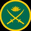 Bangla army